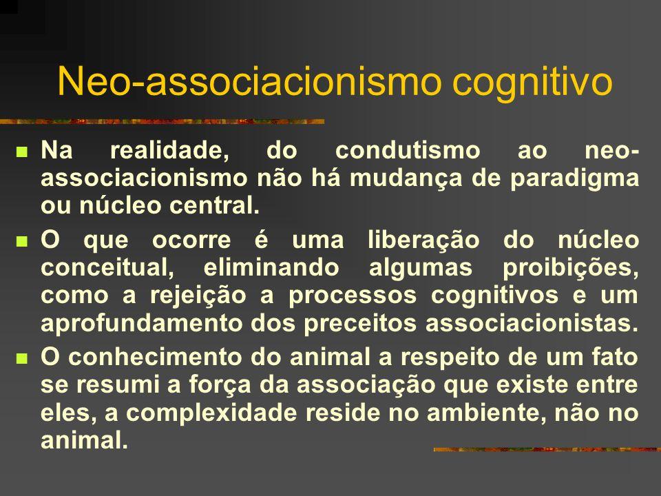 Neo-associacionismo cognitivo Na realidade, do condutismo ao neo- associacionismo não há mudança de paradigma ou núcleo central. O que ocorre é uma li