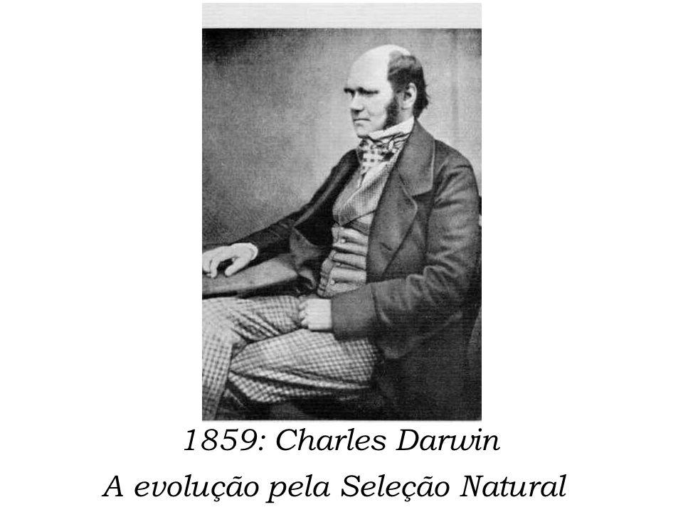 1859: Charles Darwin A evolução pela Seleção Natural
