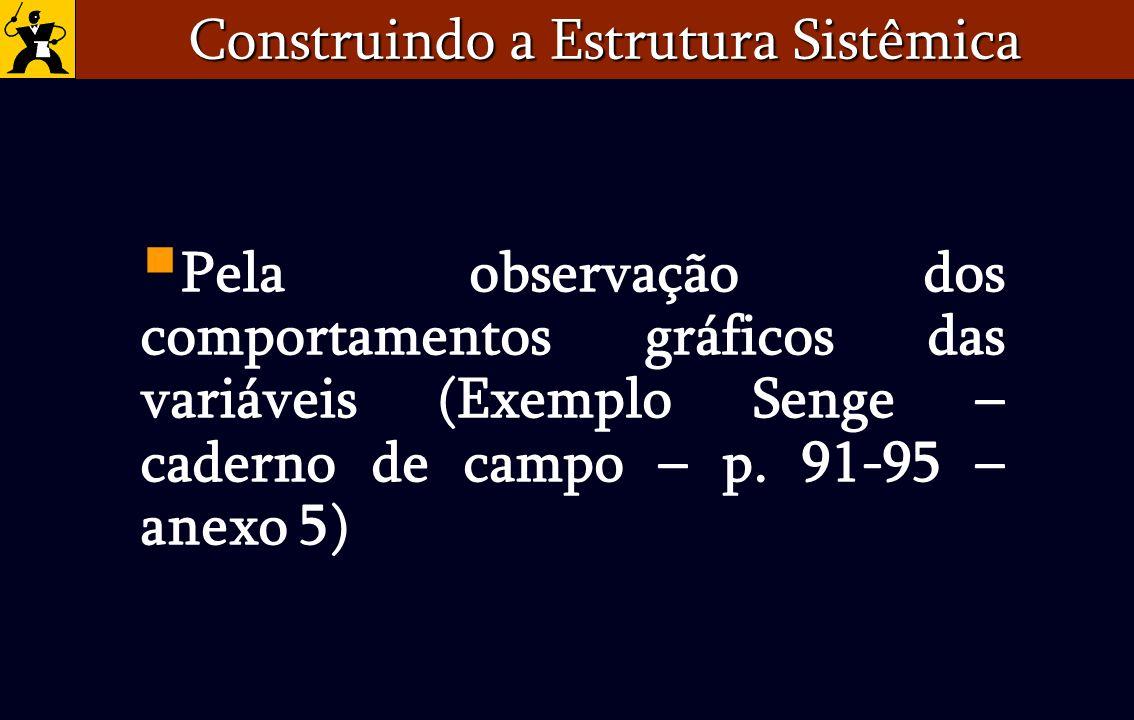 Construindo a Estrutura Sistêmica Pela observação dos comportamentos gráficos das variáveis (Exemplo Senge – caderno de campo – p. 91-95 – anexo 5)