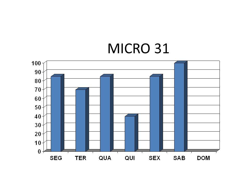 MICRO 31