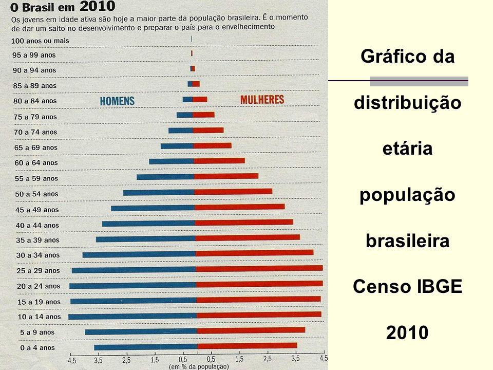 Gráfico da distribuição etária população brasileira Censo IBGE 2010