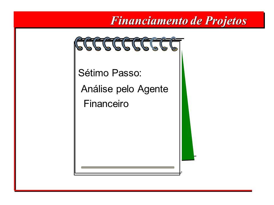 Financiamento de Projetos Sétimo Passo: Análise pelo Agente Financeiro