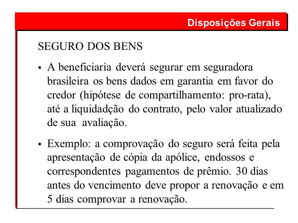 SEGURO DOS BENS A beneficiaria deverá segurar em seguradora brasileira os bens dados em garantia em favor do credor (hipótese de compartilhamento: pro
