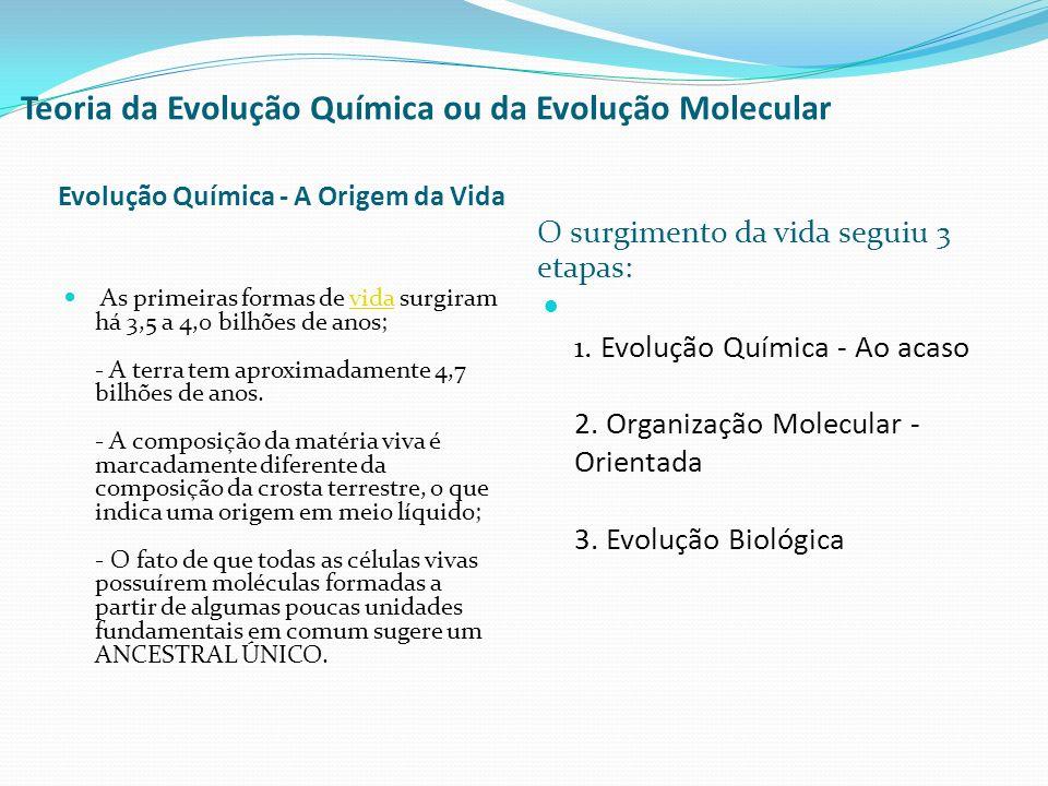 Teoria da Evolução Química ou da Evolução Molecular Evolução Química - A Origem da Vida O surgimento da vida seguiu 3 etapas: As primeiras formas de v