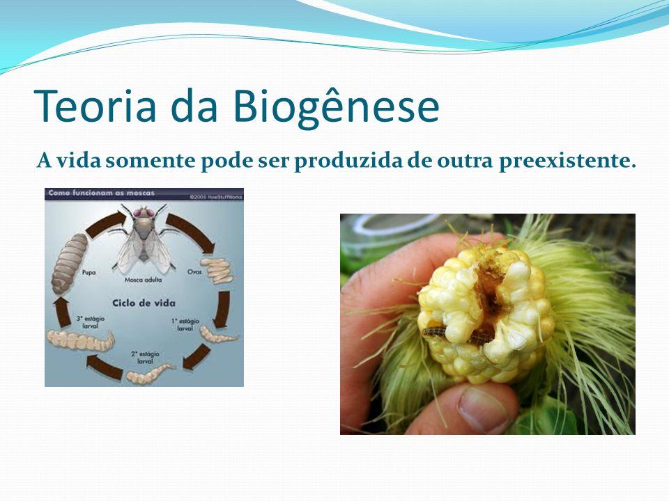Teoria da Biogênese A vida somente pode ser produzida de outra preexistente.