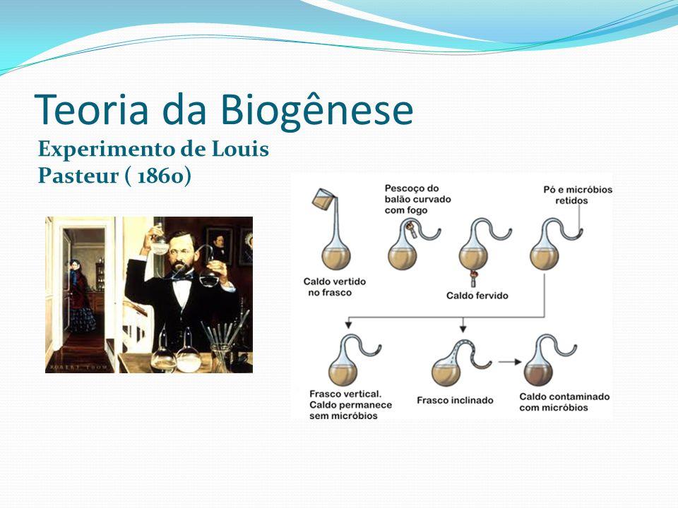 Teoria da Biogênese Experimento de Louis Pasteur ( 1860)