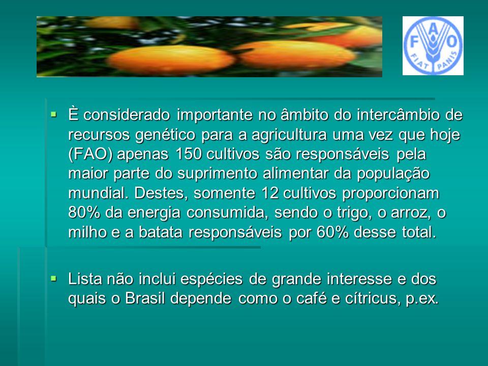 È considerado importante no âmbito do intercâmbio de recursos genético para a agricultura uma vez que hoje (FAO) apenas 150 cultivos são responsáveis
