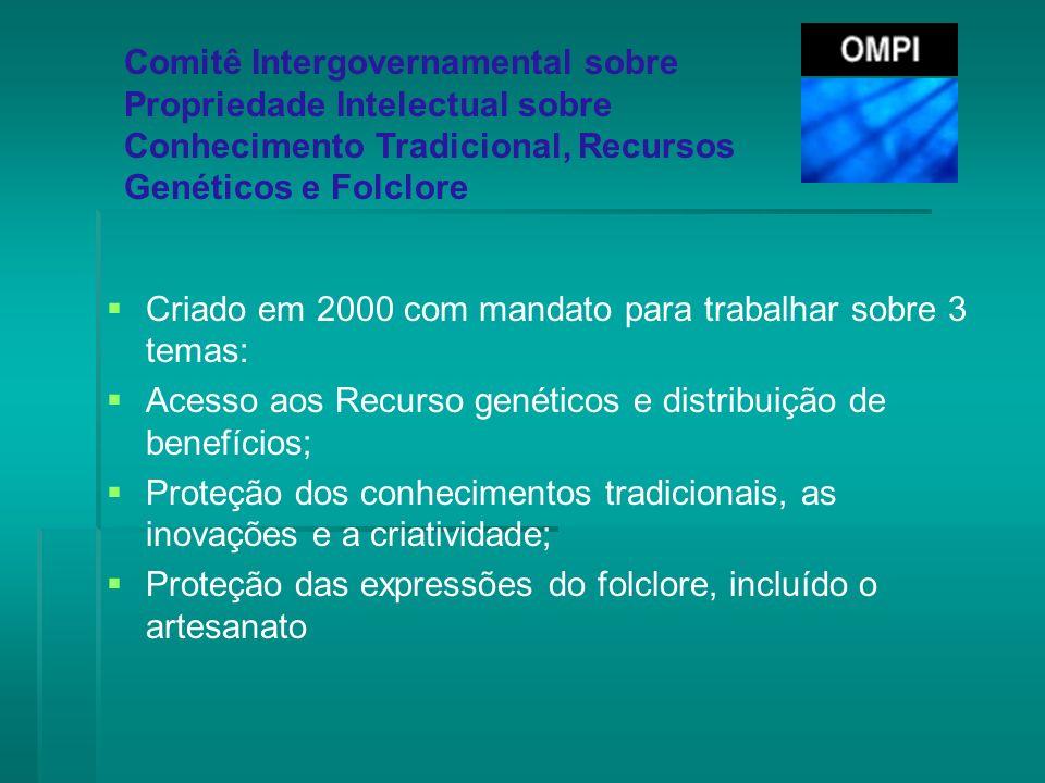 Criado em 2000 com mandato para trabalhar sobre 3 temas: Acesso aos Recurso genéticos e distribuição de benefícios; Proteção dos conhecimentos tradici