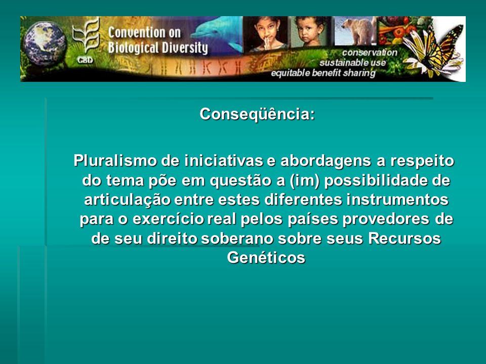 Conseqüência: Pluralismo de iniciativas e abordagens a respeito do tema põe em questão a (im) possibilidade de articulação entre estes diferentes inst