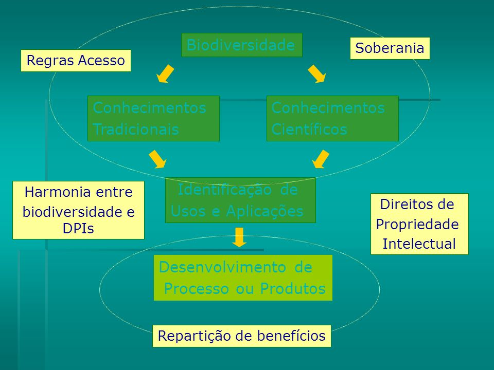 Biodiversidade Conhecimentos Tradicionais Conhecimentos Científicos Identificação de Usos e Aplicações Desenvolvimento de Processo ou Produtos Soberan