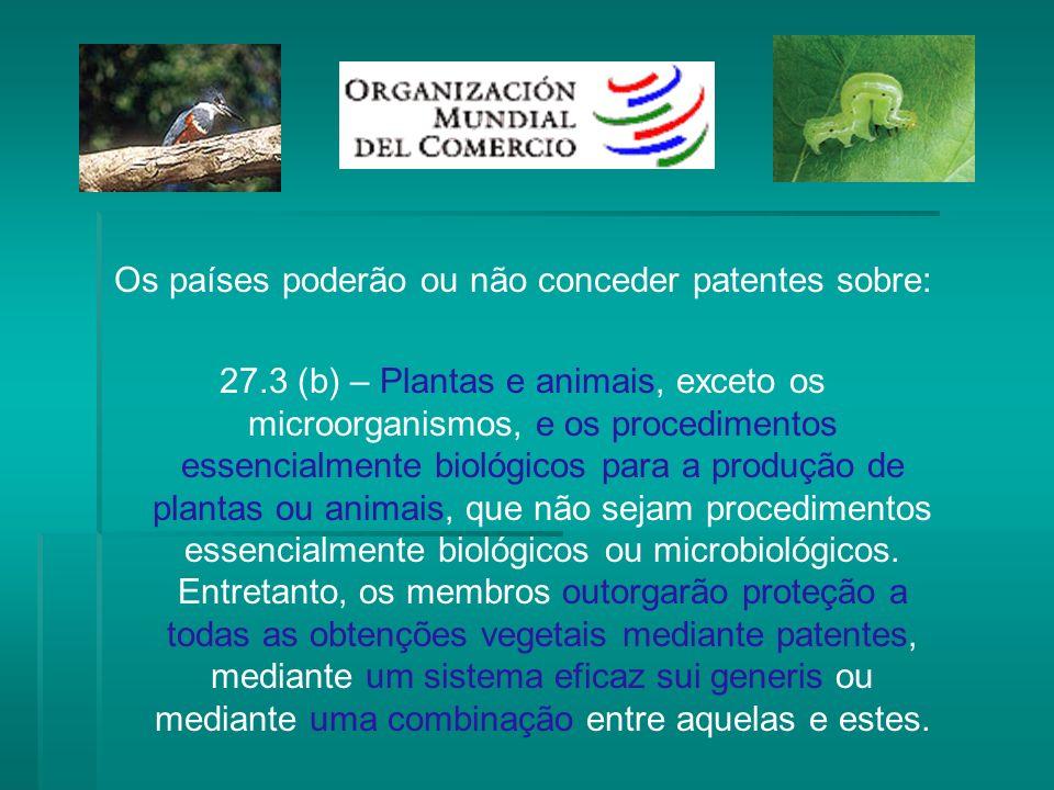 Os países poderão ou não conceder patentes sobre: 27.3 (b) – Plantas e animais, exceto os microorganismos, e os procedimentos essencialmente biológico