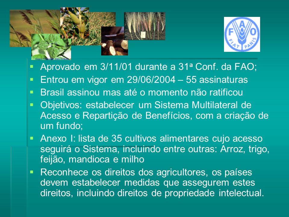 Aprovado em 3/11/01 durante a 31 a Conf. da FAO; Entrou em vigor em 29/06/2004 – 55 assinaturas Brasil assinou mas até o momento não ratificou Objetiv