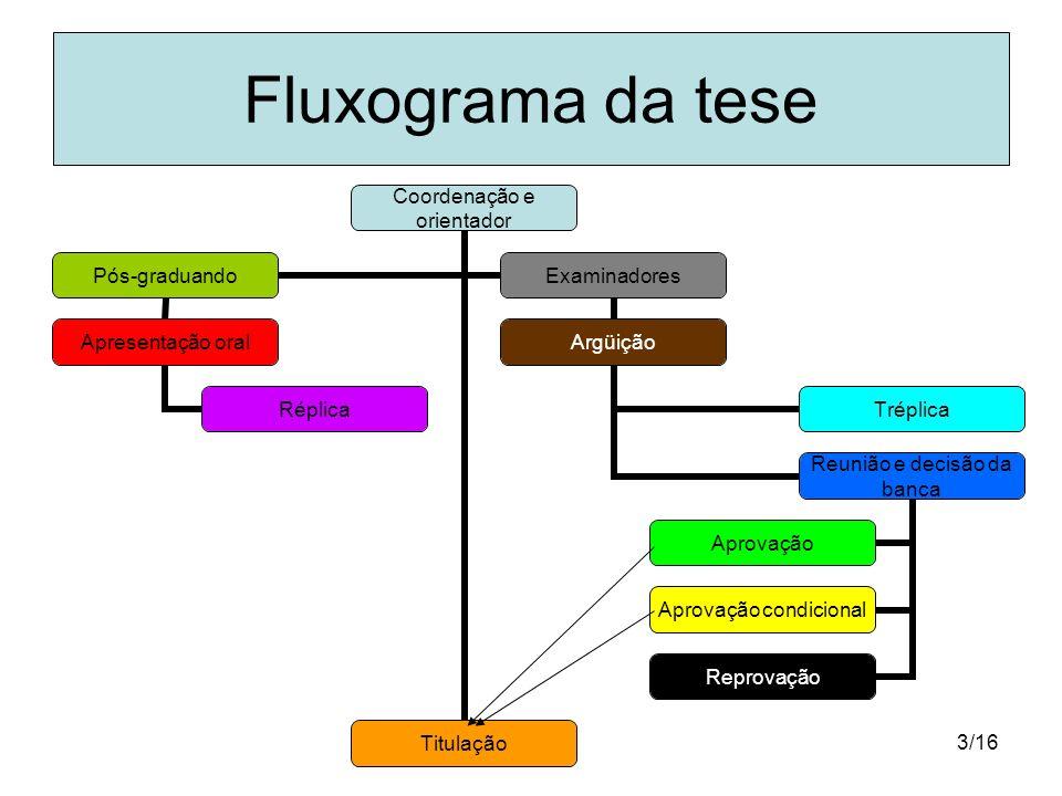 3/16 Fluxograma da tese