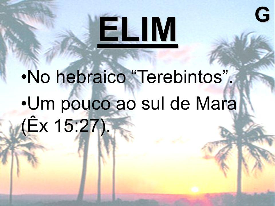 No hebraico Terebintos. Um pouco ao sul de Mara (Êx 15:27). ELIMG
