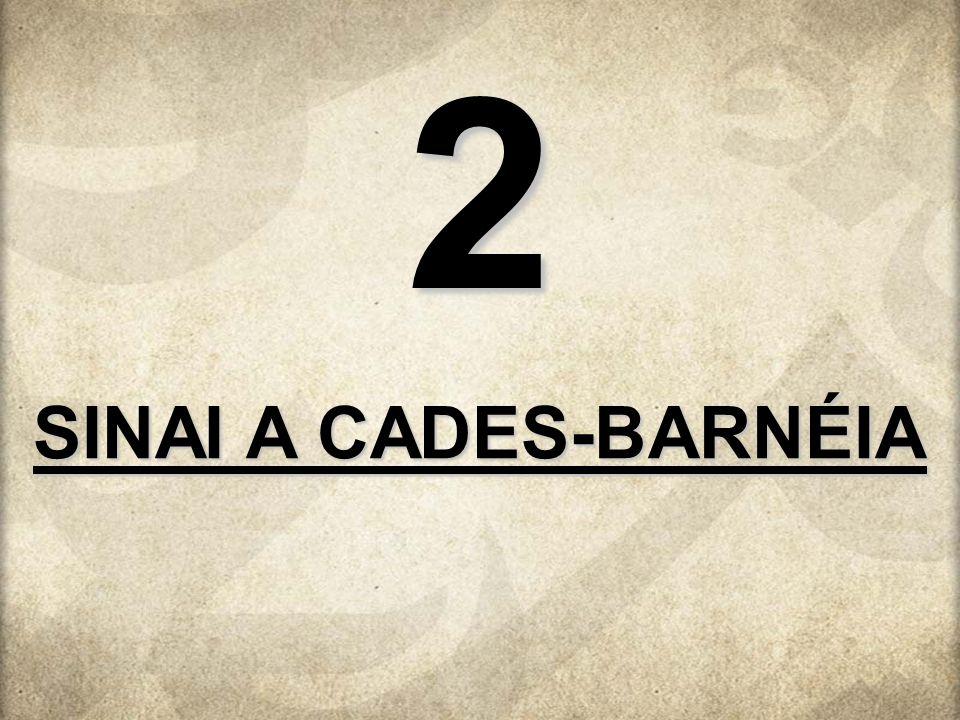 SINAI A CADES-BARNÉIA 2