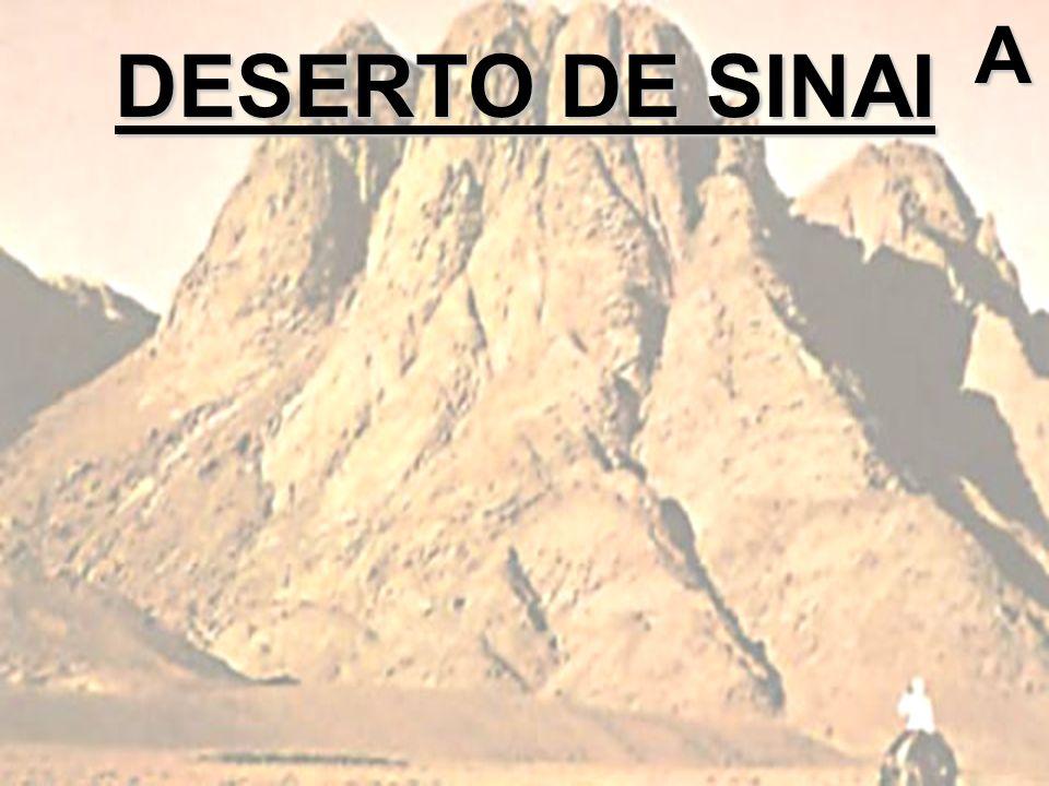 DESERTO DE SINAI A