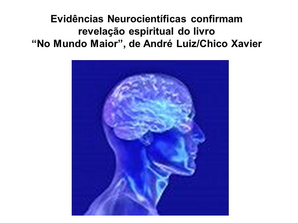 Evidências Neurocientíficas confirmam revelação espiritual do livro No Mundo Maior, de André Luiz/Chico Xavier