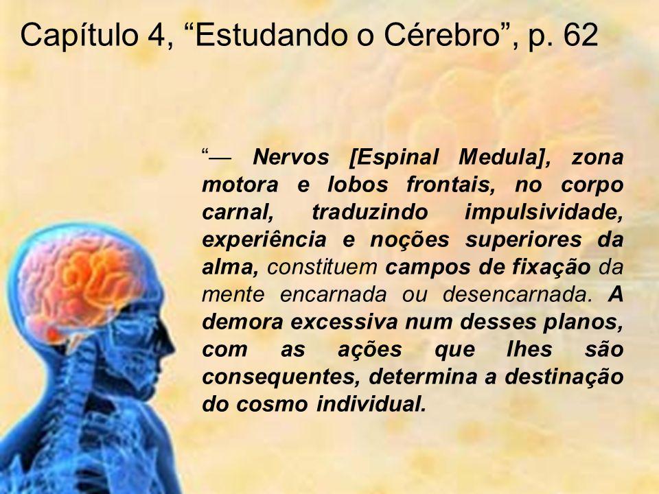 Nervos [Espinal Medula], zona motora e lobos frontais, no corpo carnal, traduzindo impulsividade, experiência e noções superiores da alma, constituem