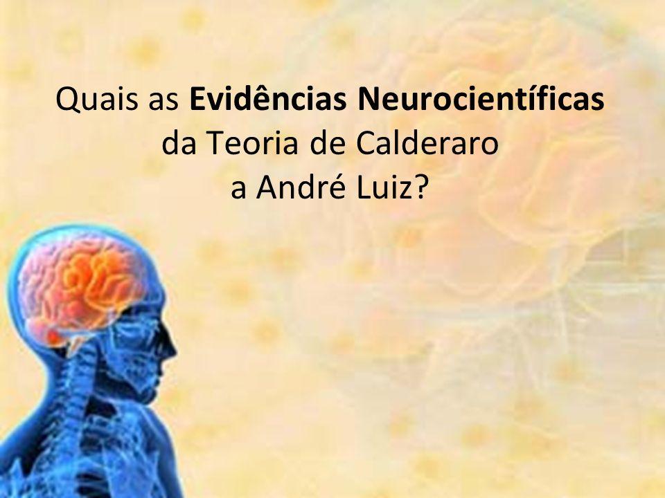 Quais as Evidências Neurocientíficas da Teoria de Calderaro a André Luiz?