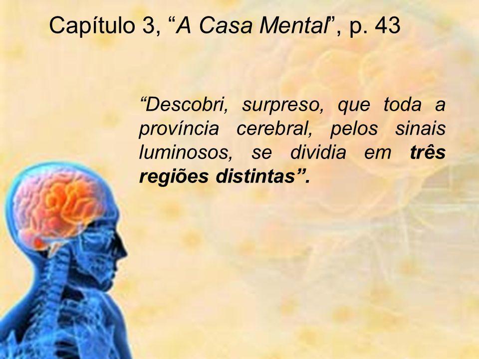 Descobri, surpreso, que toda a província cerebral, pelos sinais luminosos, se dividia em três regiões distintas. Capítulo 3, A Casa Mental, p. 43