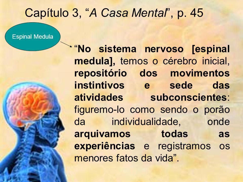 No sistema nervoso [espinal medula], temos o cérebro inicial, repositório dos movimentos instintivos e sede das atividades subconscientes: figuremo-lo