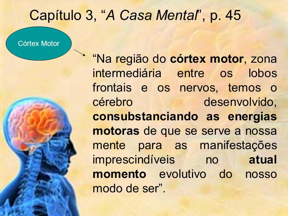 Na região do córtex motor, zona intermediária entre os lobos frontais e os nervos, temos o cérebro desenvolvido, consubstanciando as energias motoras