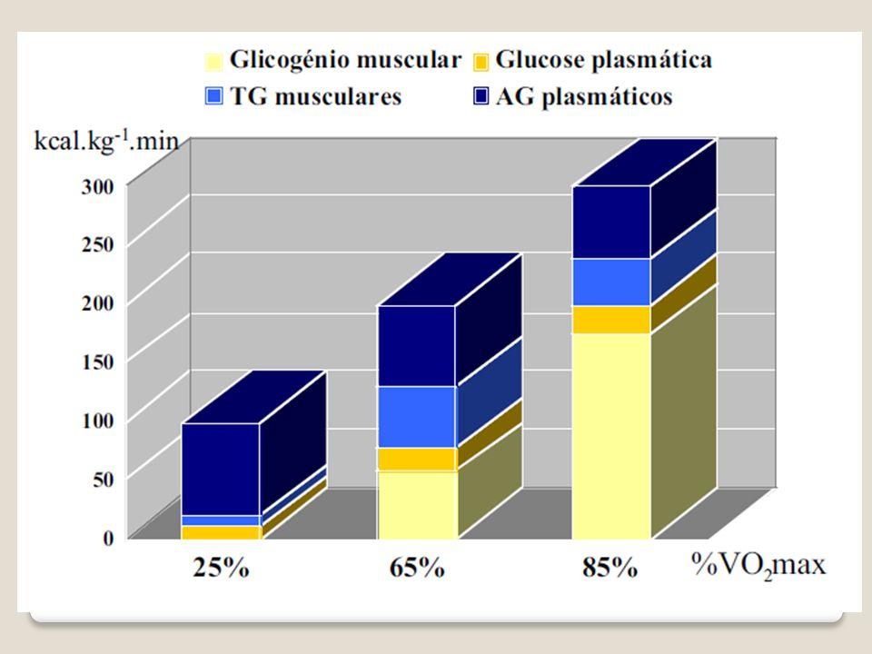 Frequência Cardíaca Frequencímetro – Monitor Cardíaco - Polar Avalia o número de batimentos do coração por minuto – b.p.m.