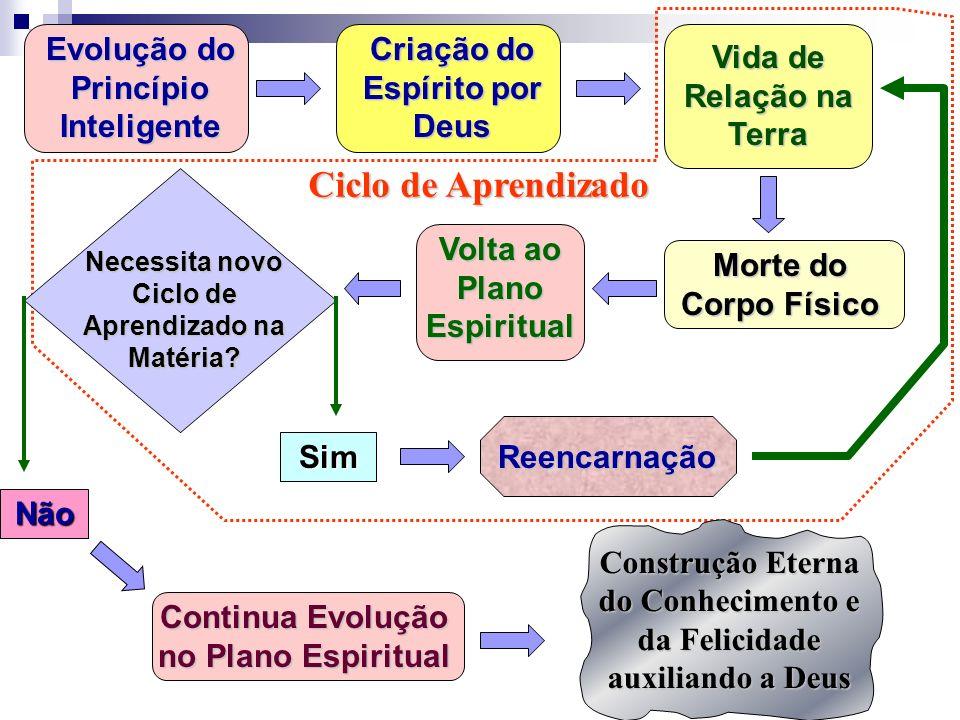 Evolução do Princípio Inteligente Criação do Espírito por Deus Vida de Relação na Terra Morte do Corpo Físico Volta ao Plano Espiritual Necessita novo