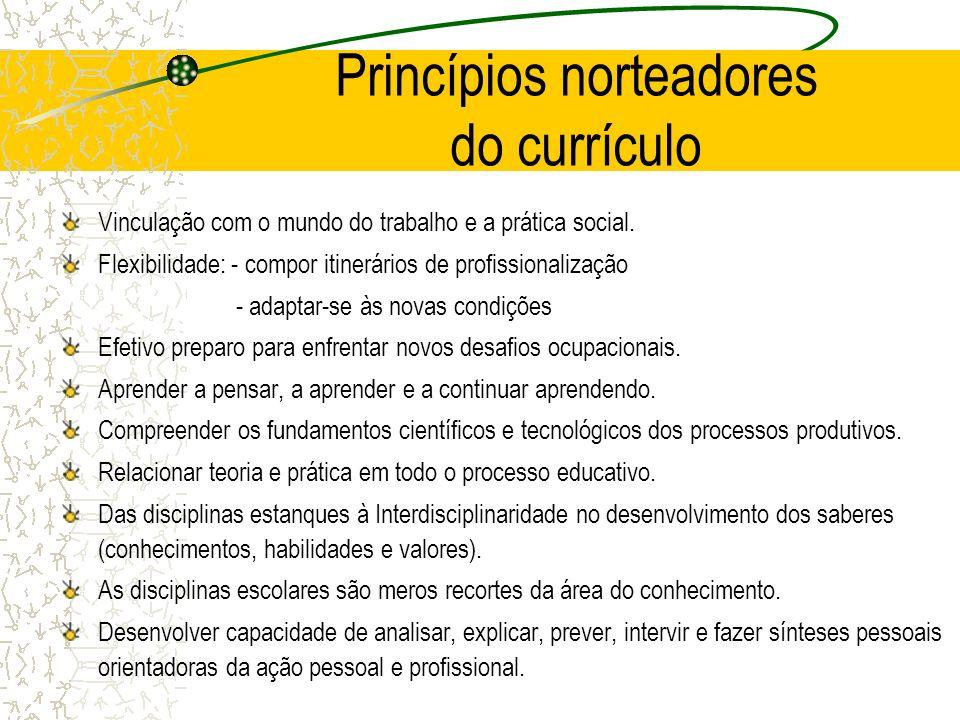 Princípios norteadores do currículo Vinculação com o mundo do trabalho e a prática social. Flexibilidade: - compor itinerários de profissionalização -