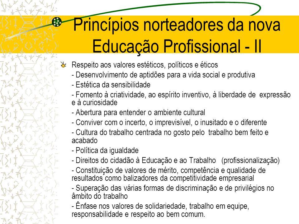 Princípios norteadores da nova Educação Profissional - II Respeito aos valores estéticos, políticos e éticos - Desenvolvimento de aptidões para a vida