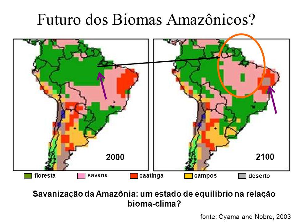 Futuro dos Biomas Amazônicos? fonte: Oyama and Nobre, 2003 Savanização da Amazônia: um estado de equilíbrio na relação bioma-clima? floresta savana ca