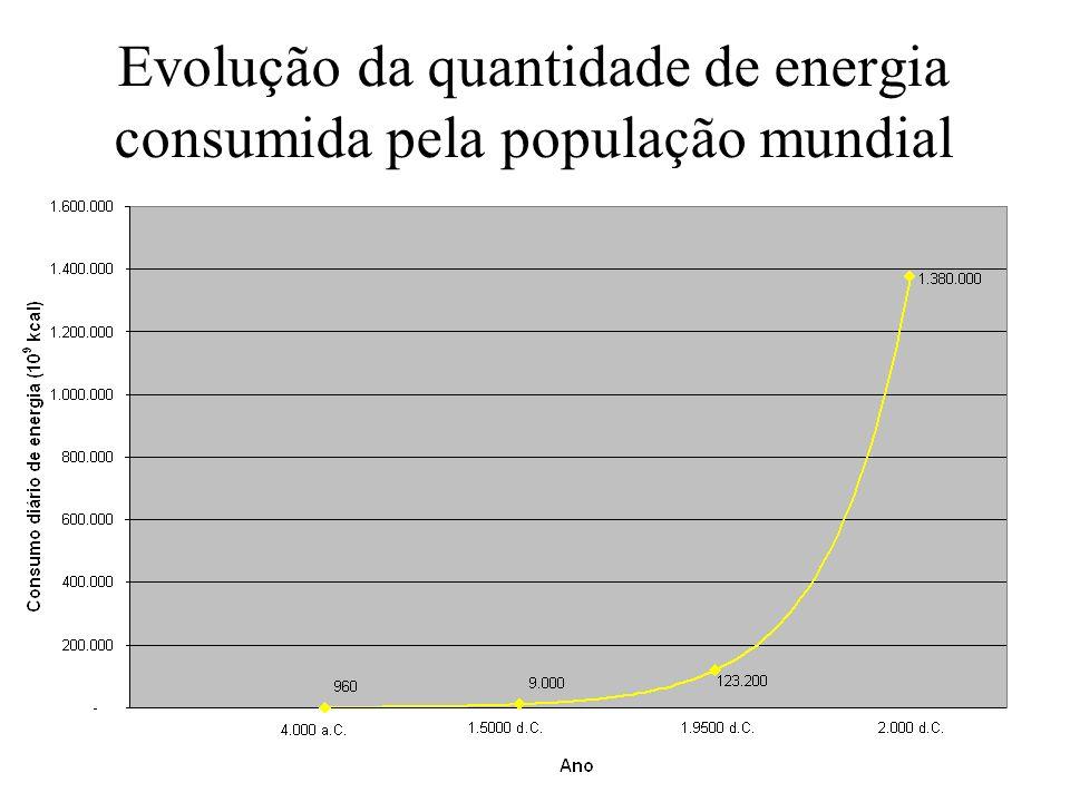 Balanço de Carbono das florestas da Amazônia (estimativas) Estoque: aproximadamente 100 bilhões de toneladas de C Emissões por desflorestamento: de 200 a 400 milhões de toneladas de C por ano Seqüestro pela fotossíntese : de 300 a 600 milhões de toneladas de C por ano
