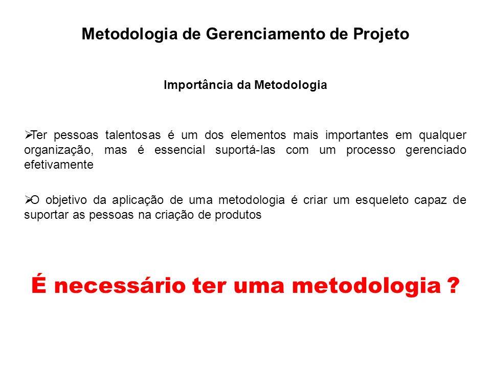 Metodologia de Gerenciamento de Projeto Importância da Metodologia Ter pessoas talentosas é um dos elementos mais importantes em qualquer organização,