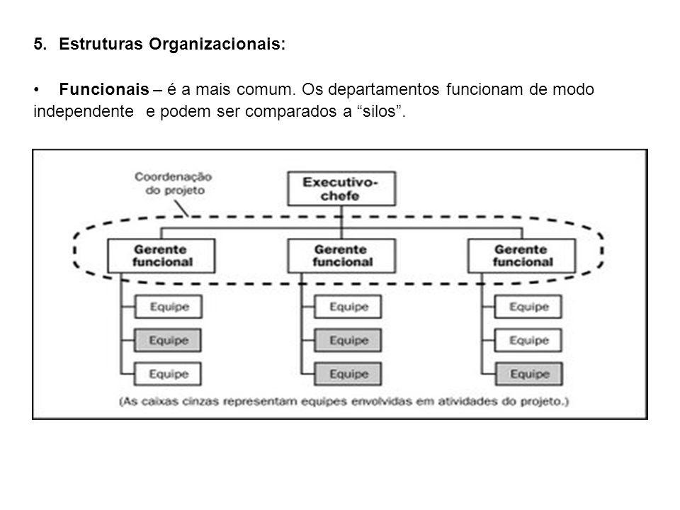 5.Estruturas Organizacionais: Funcionais – é a mais comum. Os departamentos funcionam de modo independente e podem ser comparados a silos.