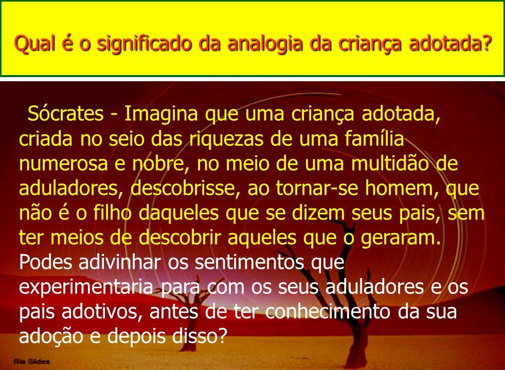 Qual é o significado da analogia da criança adotada? Sócrates - Imagina que uma criança adotada, criada no seio das riquezas de uma família numerosa e