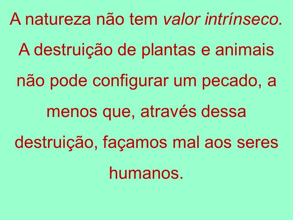 A natureza não tem valor intrínseco. A destruição de plantas e animais não pode configurar um pecado, a menos que, através dessa destruição, façamos m