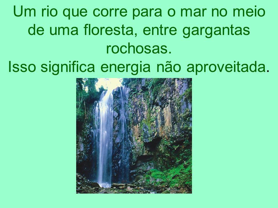 Um rio que corre para o mar no meio de uma floresta, entre gargantas rochosas. Isso significa energia não aproveitada.