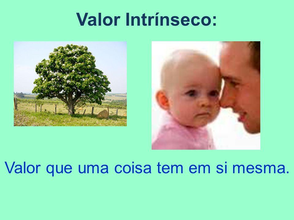 Valor Instrumental: Meio para a obtenção de algum fim ou objetivo.
