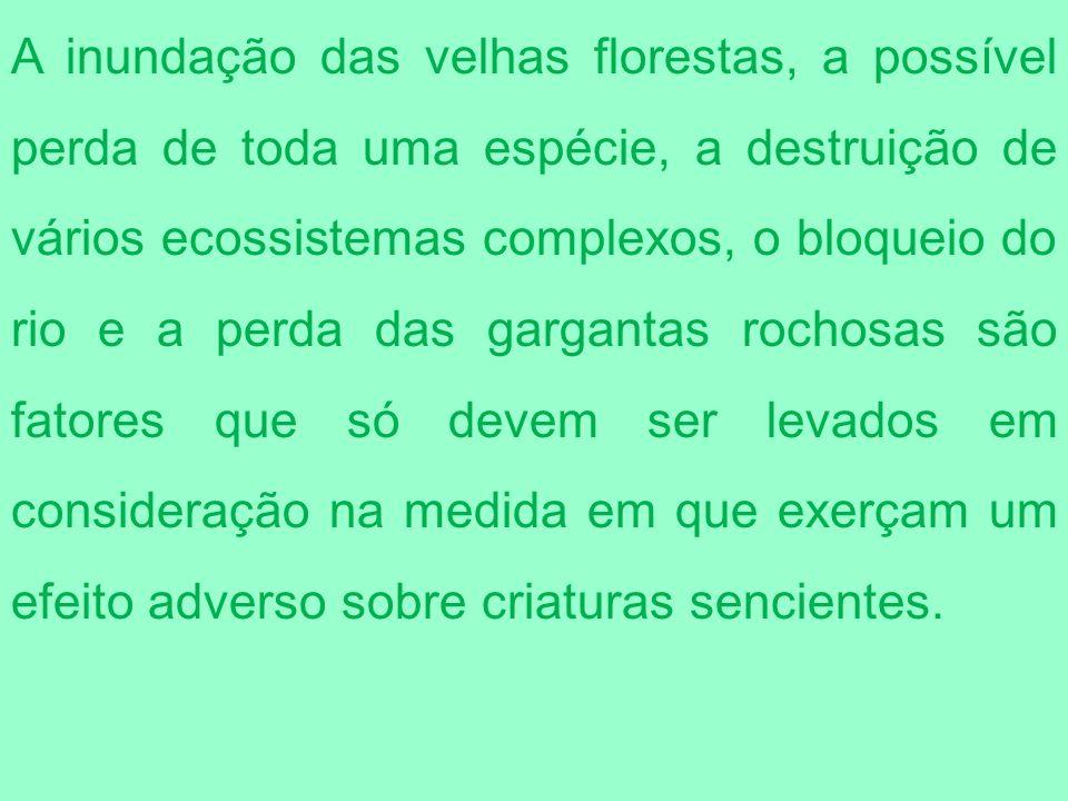 A inundação das velhas florestas, a possível perda de toda uma espécie, a destruição de vários ecossistemas complexos, o bloqueio do rio e a perda das