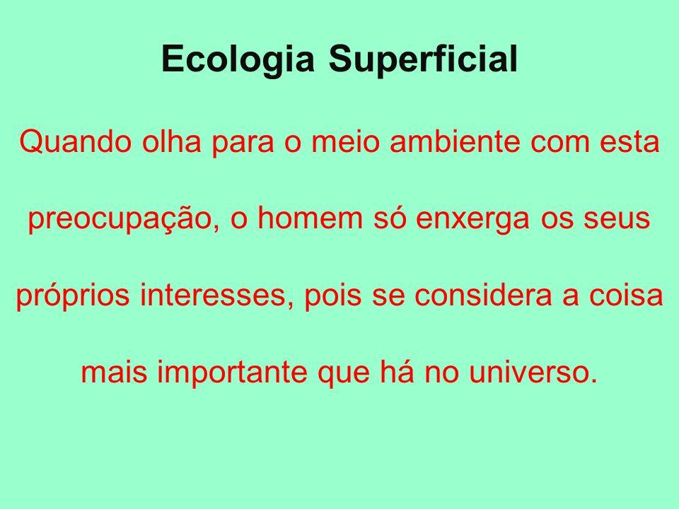 Ecologia Superficial Quando olha para o meio ambiente com esta preocupação, o homem só enxerga os seus próprios interesses, pois se considera a coisa