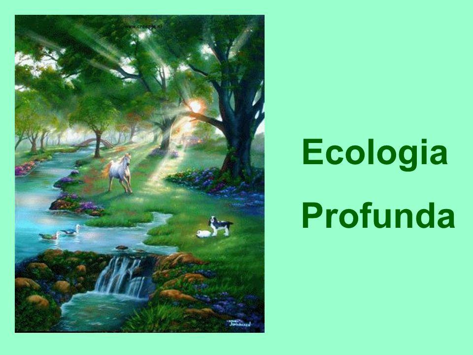 Deseja preservar a integridade da biosfera pela necessidade dessa preservação, ou seja, independentemente dos possíveis benefícios que o fato de preservá-la pudesse trazer para os seres humanos.