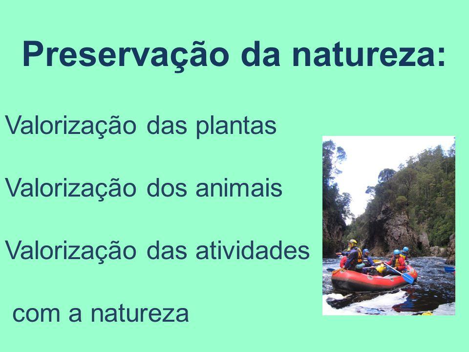 Preservação da natureza: Valorização das plantas Valorização dos animais Valorização das atividades com a natureza