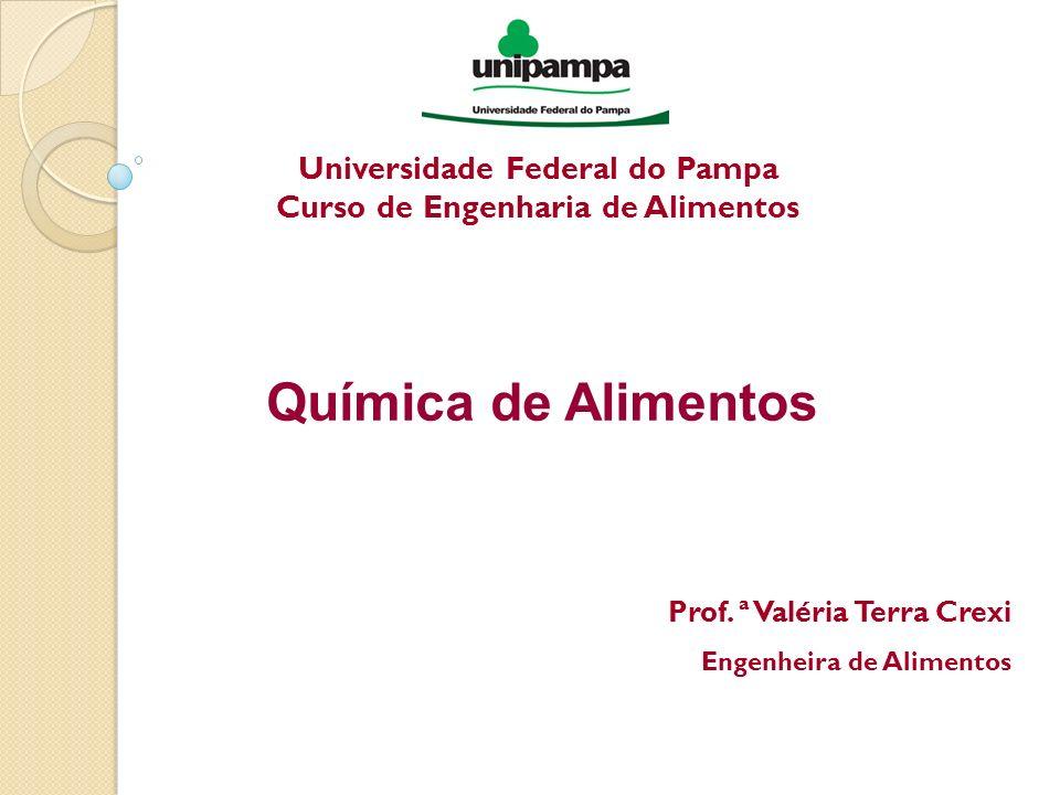 Universidade Federal do Pampa Curso de Engenharia de Alimentos Química de Alimentos Prof. ª Valéria Terra Crexi Engenheira de Alimentos