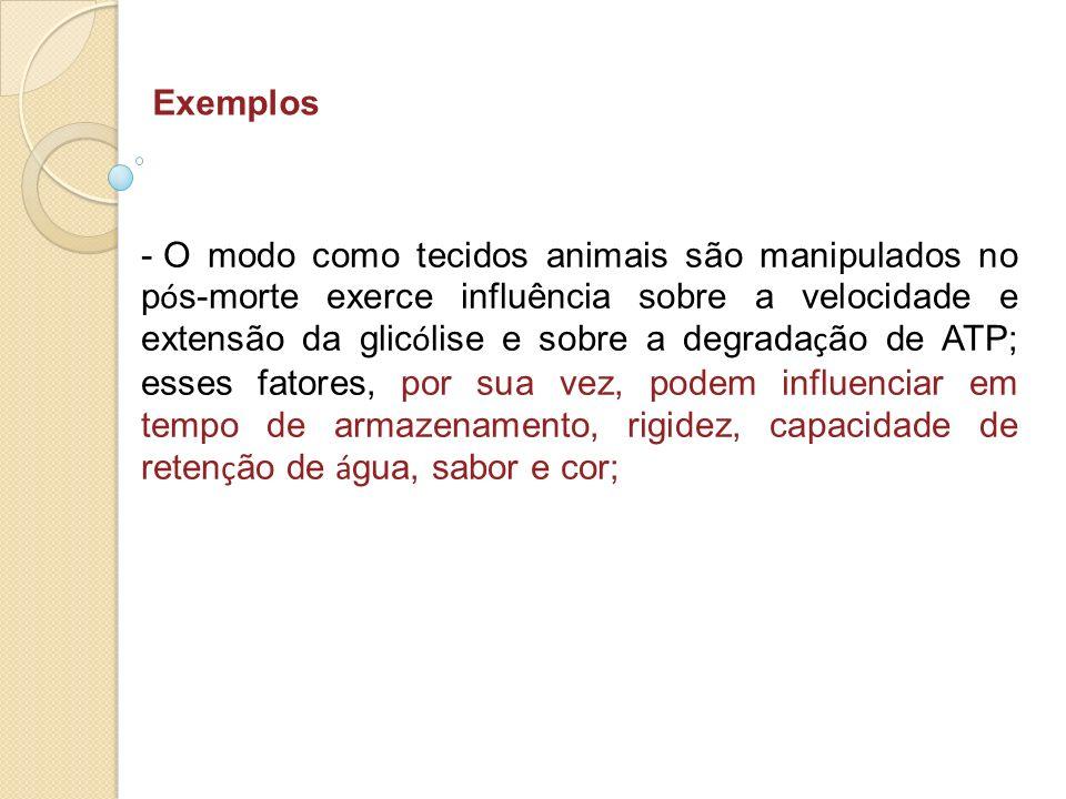 Exemplos - O modo como tecidos animais são manipulados no p ó s-morte exerce influência sobre a velocidade e extensão da glic ó lise e sobre a degrada