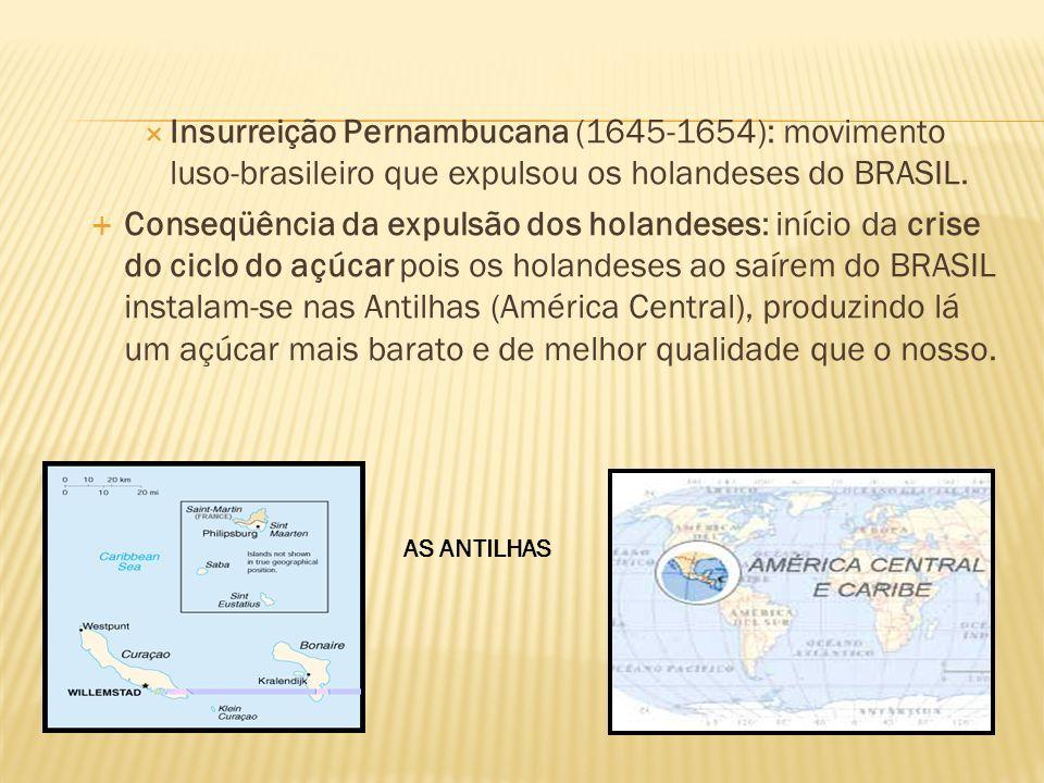 Insurreição Pernambucana (1645-1654): movimento luso-brasileiro que expulsou os holandeses do BRASIL. Conseqüência da expulsão dos holandeses: início