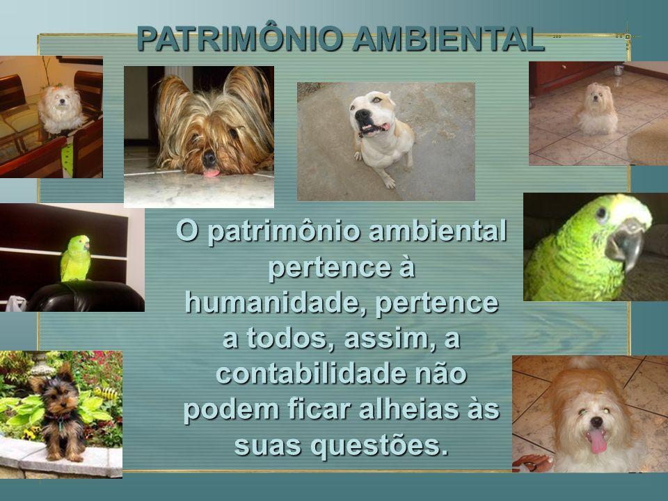23 O patrimônio ambiental pertence à humanidade, pertence a todos, assim, a contabilidade não podem ficar alheias às suas questões. PATRIMÔNIO AMBIENT