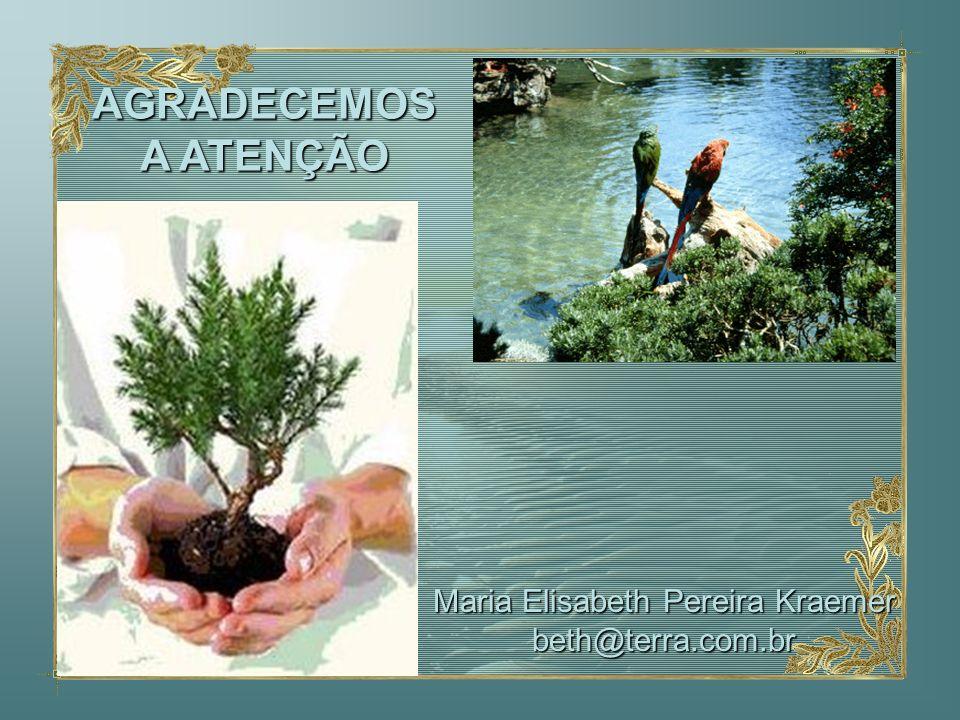 AGRADECEMOS A ATENÇÃO Maria Elisabeth Pereira Kraemer beth@terra.com.br