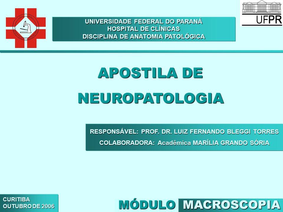UNIVERSIDADE FEDERAL DO PARANÁ HOSPITAL DE CLÍNICAS DISCIPLINA DE ANATOMIA PATOLÓGICA APOSTILA DE NEUROPATOLOGIA RESPONSÁVEL: PROF. DR. LUIZ FERNANDO