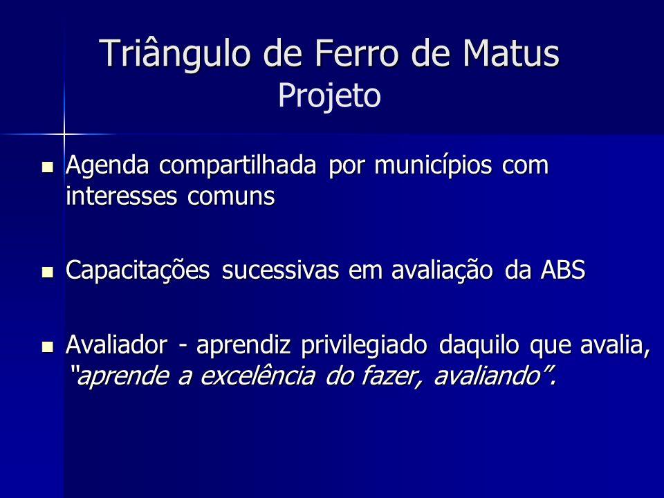 Triângulo de Ferro de Matus Triângulo de Ferro de Matus Projeto Agenda compartilhada por municípios com interesses comuns Agenda compartilhada por mun