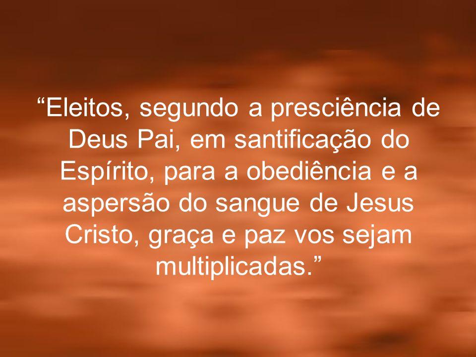 Eleitos, segundo a presciência de Deus Pai, em santificação do Espírito, para a obediência e a aspersão do sangue de Jesus Cristo, graça e paz vos sej